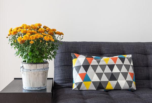 werfen Kissen auf dem Sofa