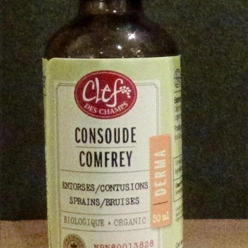 Consoude (Symphytum officinale) teinture 50 ml