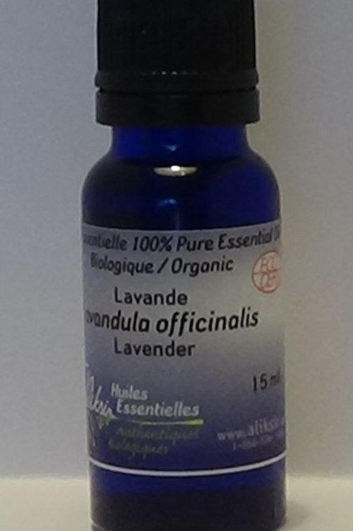 Lavande officinale (Lavandula officinalis) huile essentielle 15 ml