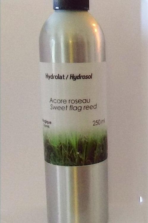 Acore roseau, hydrolat Aliksir, 250 ml