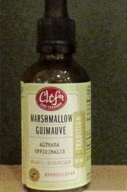 Guimauve (Althaea officinalis) teinture Clef des champs 50 ml