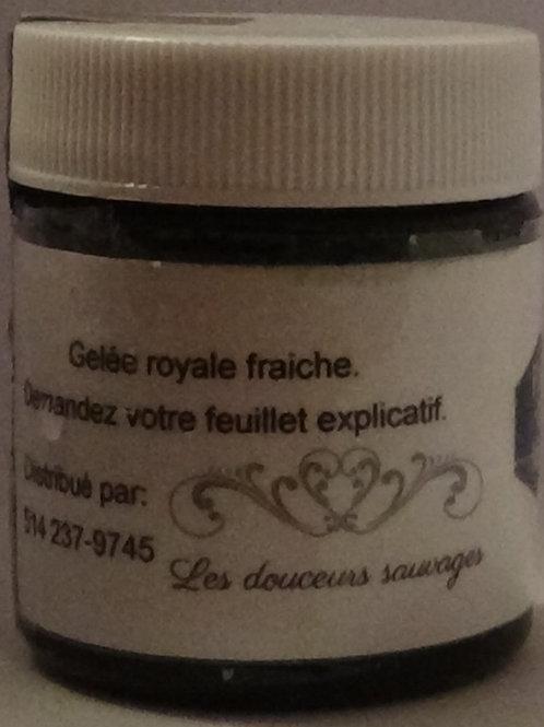 Gelée royale fraiche 30 g