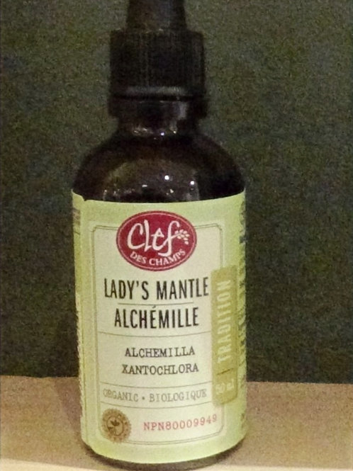 Alchémille (Alchemilla xanthochlora) teinture Clef des champs 50 ml