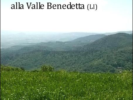 Passeggiate benessere alla Valle Benedetta (LI)