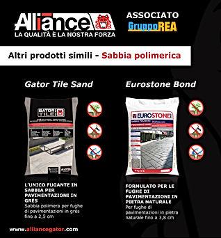 social_alliance_2.jpg