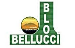 bellucci block.jpg