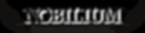 agosti-nanotherm-logo-nobilium-pannelli-