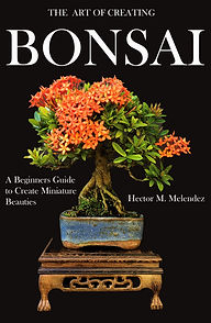 Bonsai Book Cover English New 2.jpg