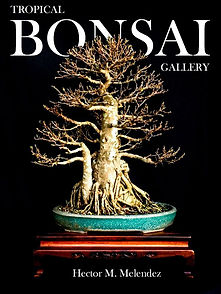Bonsai Galery Cover English 2.jpg