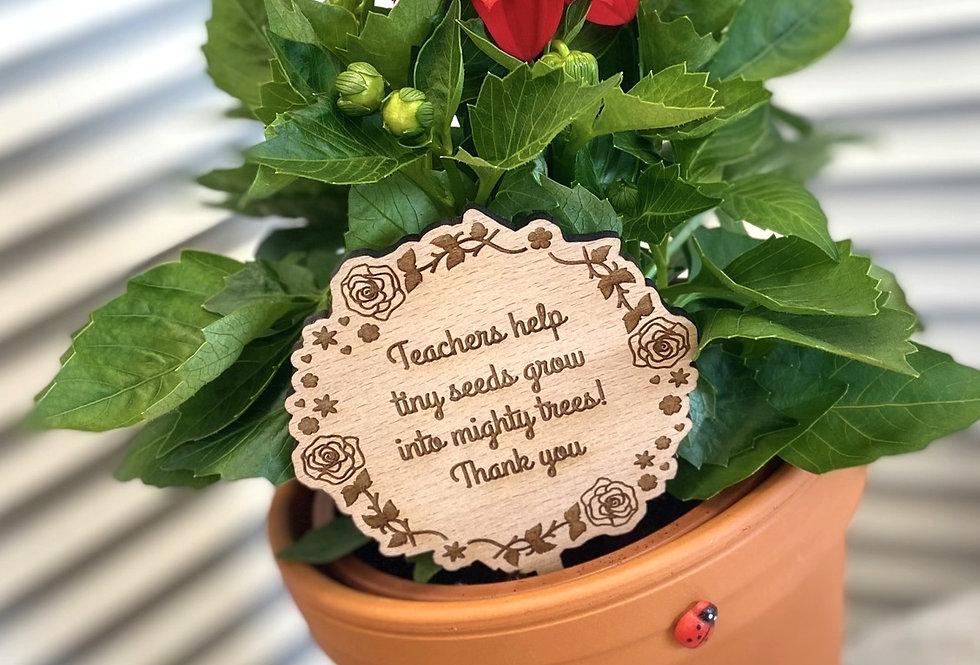 TEACHERS HELP TINY SEEDS PLAQUE WITH PLANT & POT