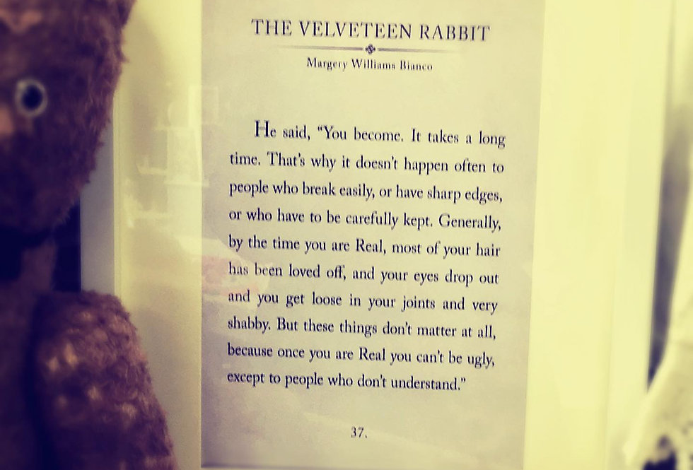 TheVelveteen Rabbit