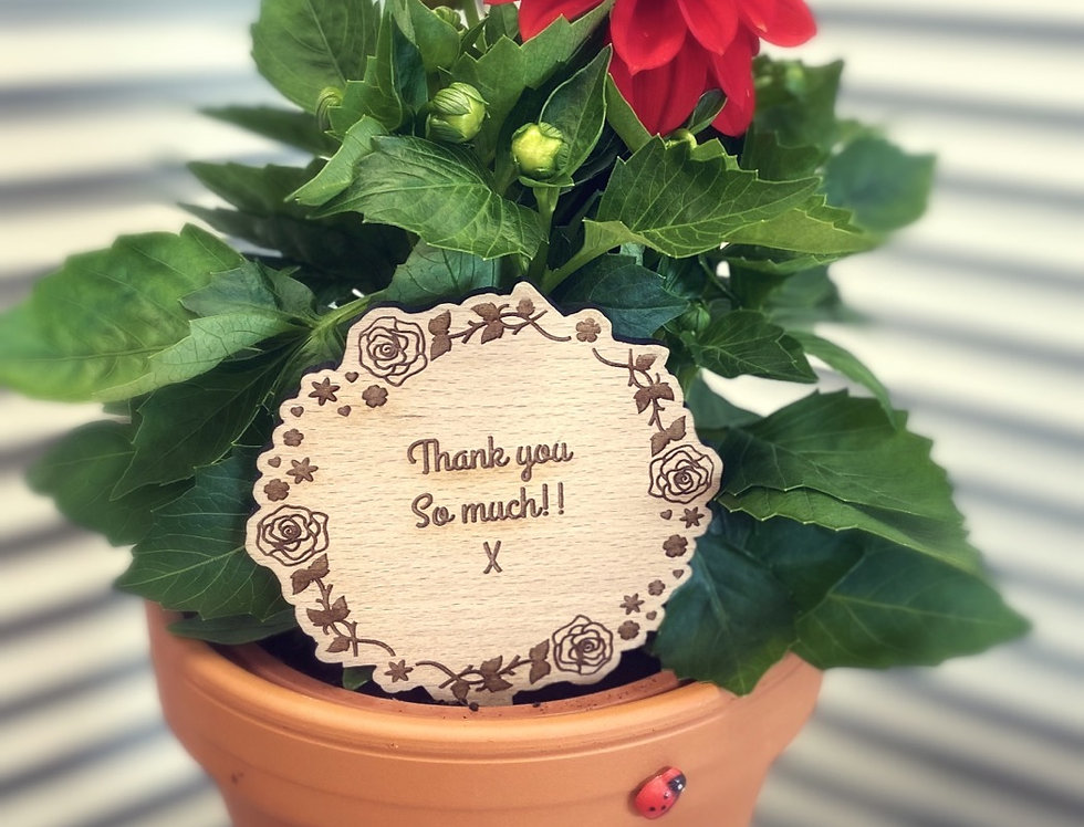 THANK YOU SO MUCH PLAQUE WITH PLANT & POT