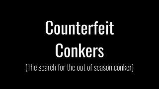 Conker Training