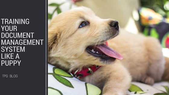Training Your Document Management System Like a Puppy