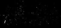 Logo Navacopah e.V.