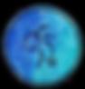 navacopah logo