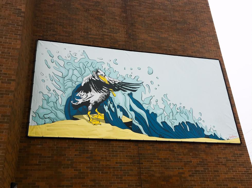 Pedro the Pelican