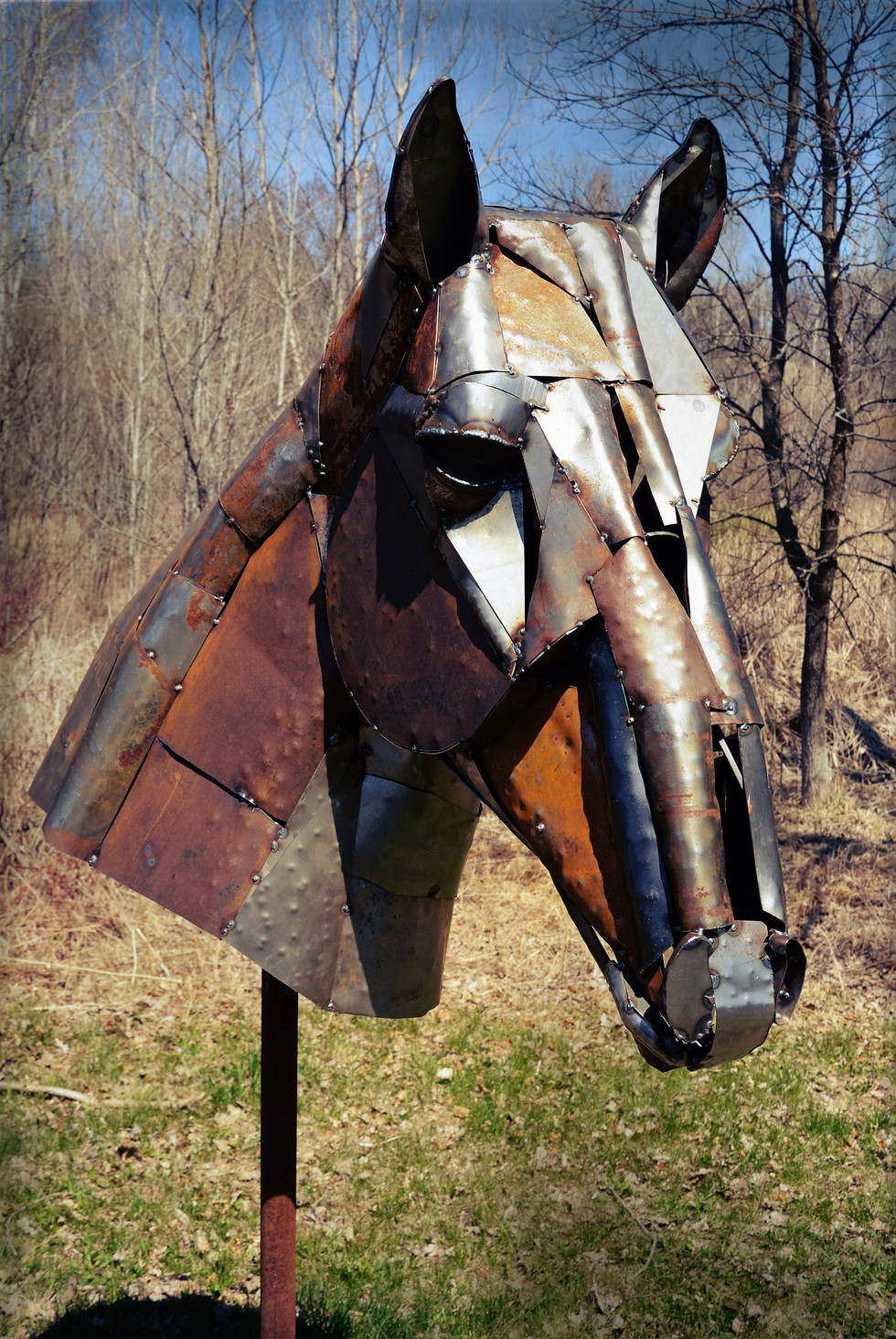 Metal Horse Head2.jpeg