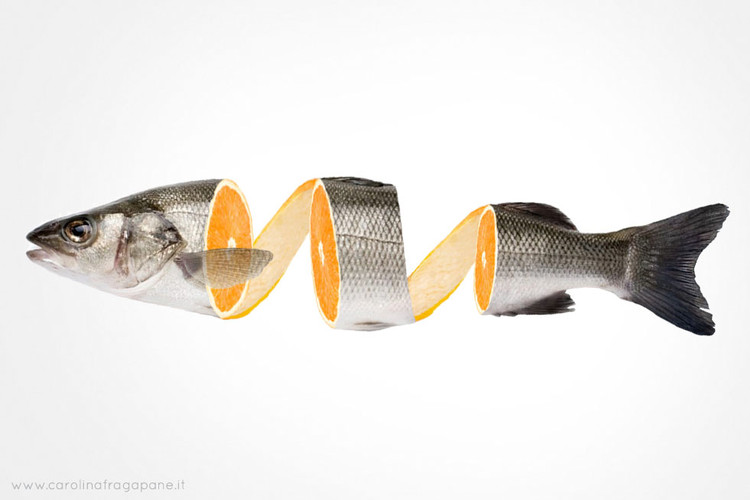 carolina-fragapane-orange-fish.jpg