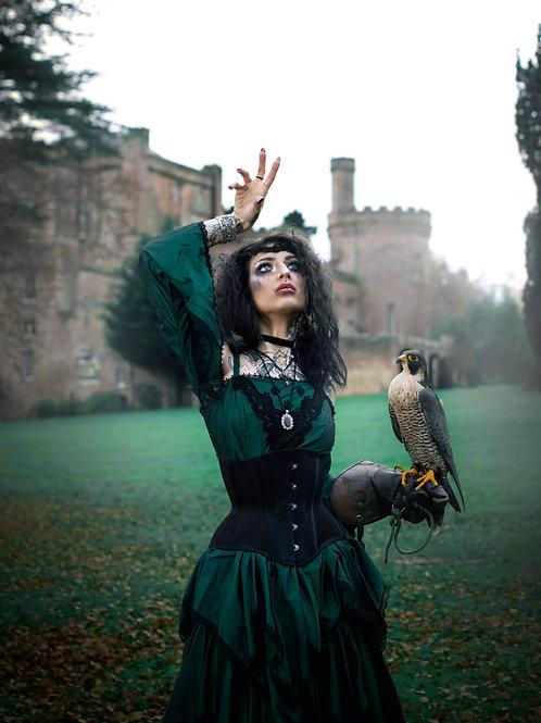 Lady of the birds II Prints