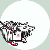 stage_accordéon.jpg