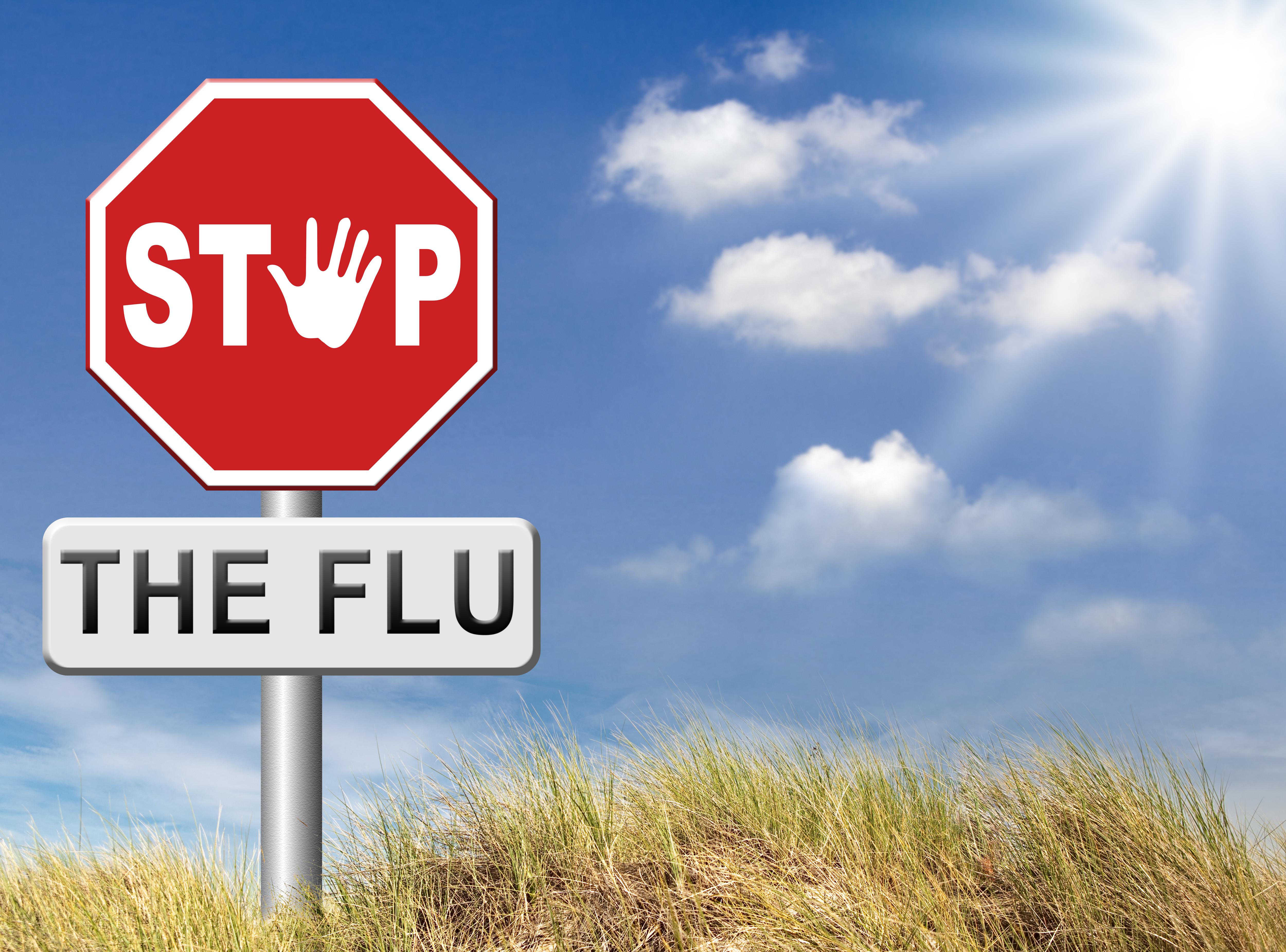 baldwin flu2