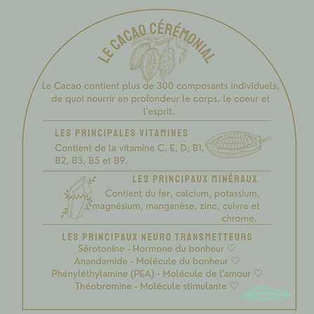 IG new cacao composants.png