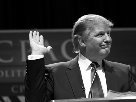 Donald Trump's Yellow Brick Road