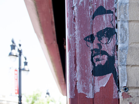 From Malcolm X to Joe Biden - The mission to save the US