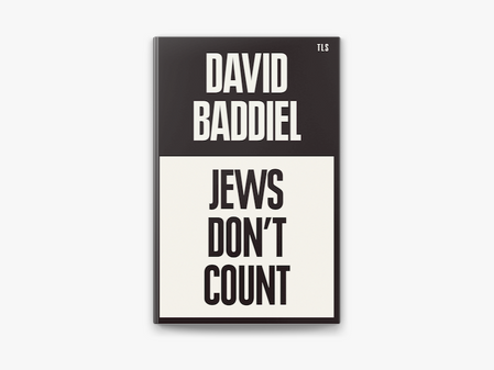 Book review, 'Jews don't count', by David Baddiel