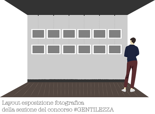 layout concorso.png