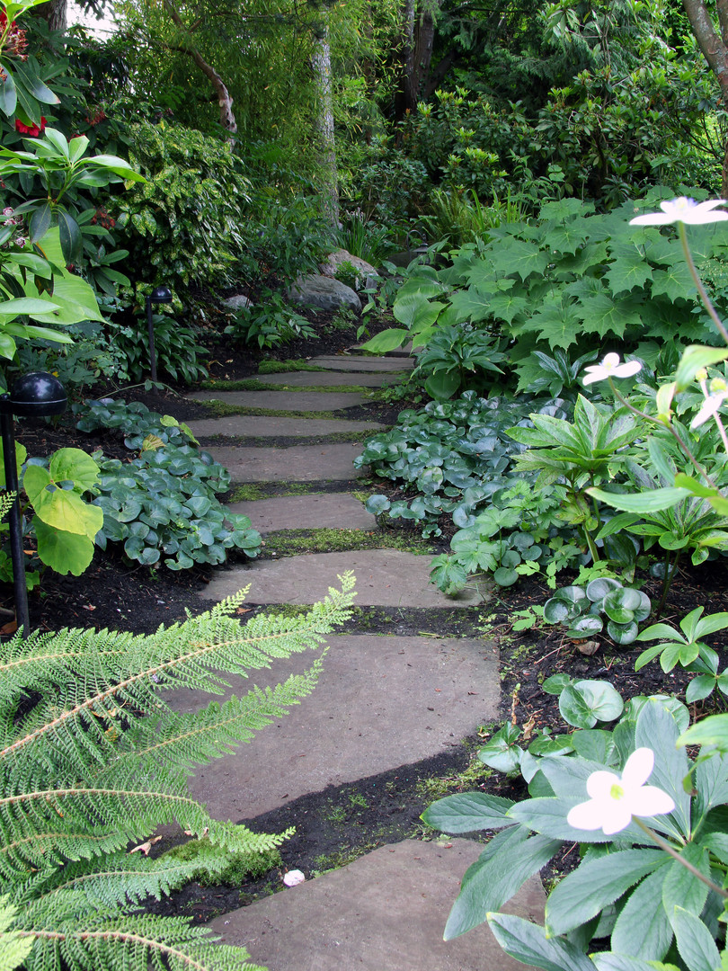 Garden path lined with shade perennials.