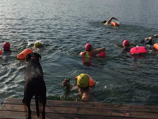 Safety first in open water swimming