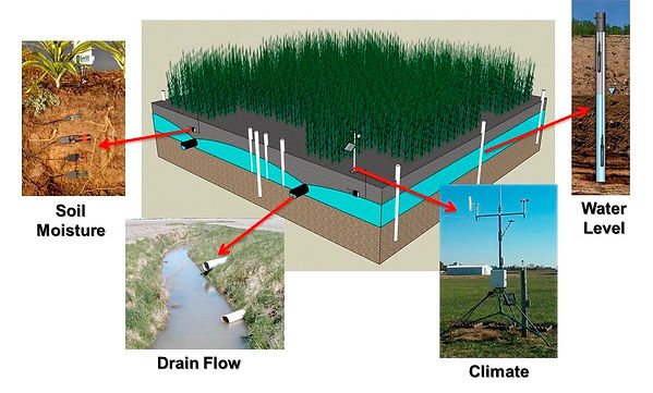 Осушение сельскохозяйственных угодий с использованием Modflow