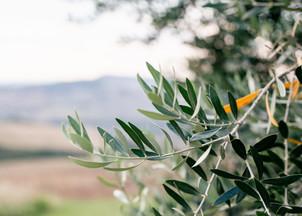 IrinaOdoardi_Italy10.jpg