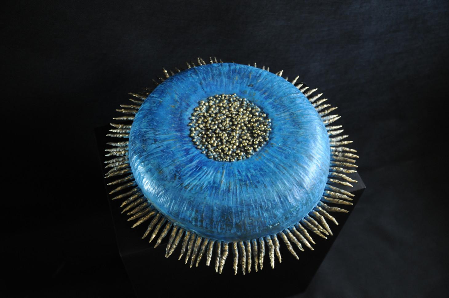 Small Round Anemone