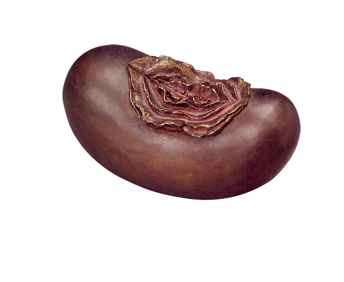 Burgundy Clam