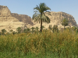 On the way from Hurghada to Abydos