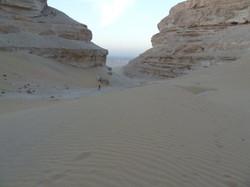 Desert near Abydos
