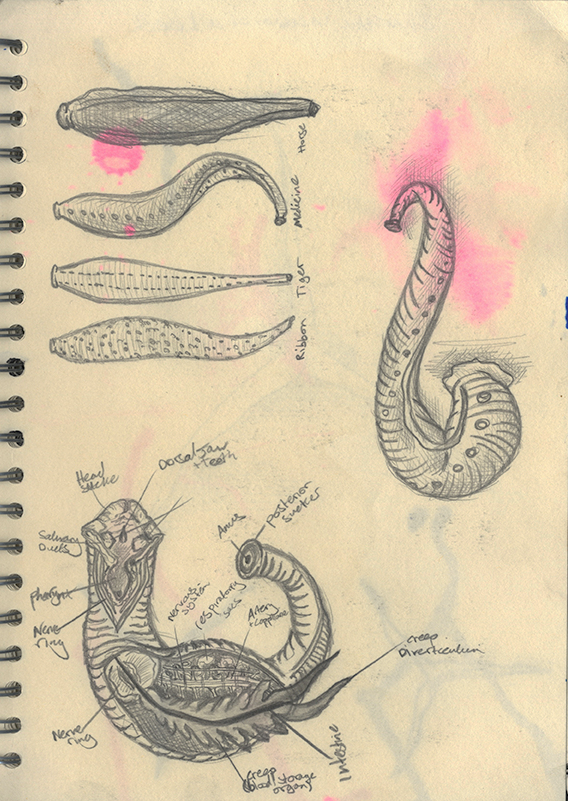 sketchbook 11_edited.jpg
