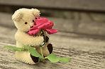 teddy-889892__340.jpg
