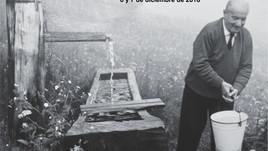 Cuerpo, mundo y vida. Heidegger en perspectiva. II Jornadas Nacionales (Argentina)