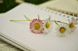 notebook-1405303_1280.jpg