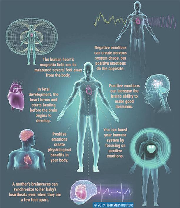 Magnetismus-des-Herzens.jpg