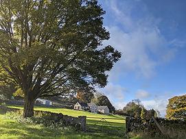 Trogues Farm- Ancient Hay Meadows