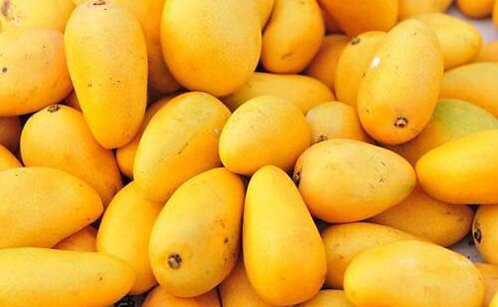 Manilla Mango