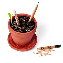 teraryum, teraryum malzemeleri, minyaturbahce, kokedama, geometrikfanus, fanus, terrarium, teraryum workshop, minyatür bahçe, teraryum satin al kalem, yeseren kalem, sproud pencil, agac kalem, yesil kalem,  kokedama, kokedama satın al, yosun topu, yosun saksı,teraryum, terrarium, minyatür bahçe, minyaturbahce, bonsai, sukulent,  fanus, geometrik fanusma Satın Al, teraryum, terrarium, minyatür bahçe, minyaturbahce, bonsai, sukulent, teraryum malzemeleri ankara, teraryum malzemeleri istanbul, teraryum malzemeleri izmir, teraryum istanbul, teraryum malzeme, teraryum için gerekli olanlar, teraryum malzemeleri bursa, amigurumi
