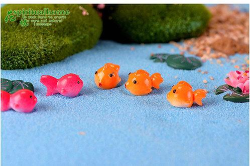 Mini Tombul Balık