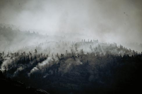 Fires Day 2-2.jpg