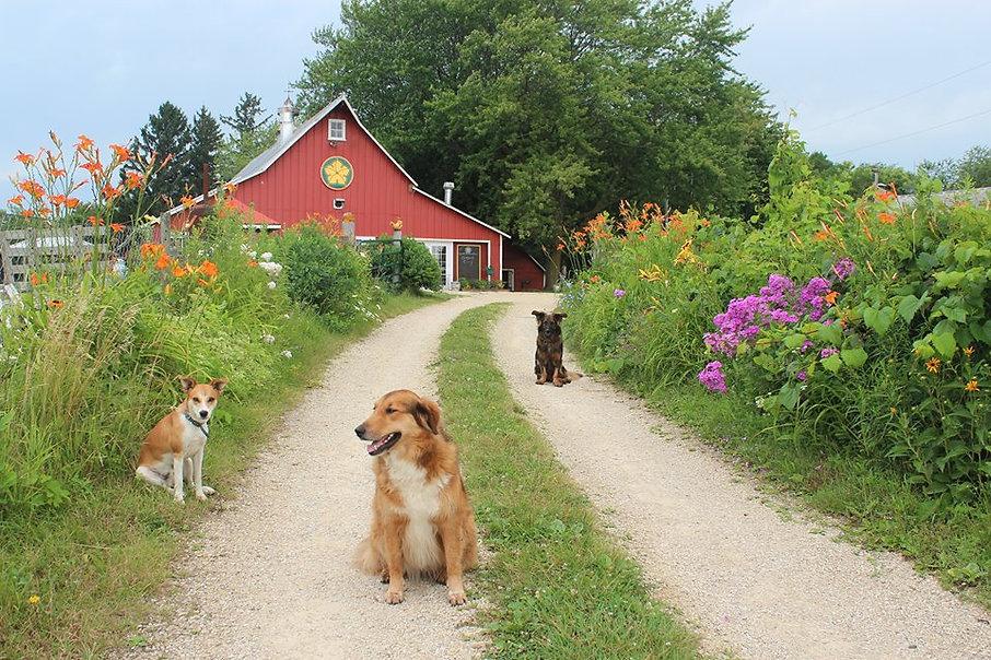 farm welcome - Copy.jpg
